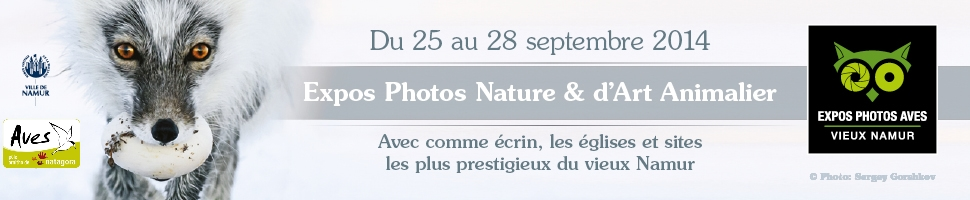 Expositions Photos et d'Art Animalier